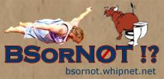 BSorNOT !! Banner